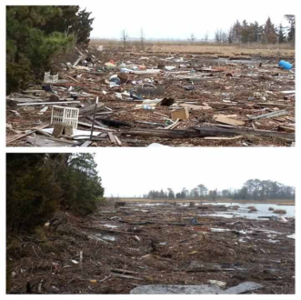Baywood Swamp in Brick, NJ before and after Waves of Action!